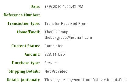 Третья выплата с BNInvestmentsBux.com